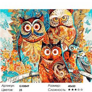 Количество цветов и сложность Совушки Раскраска картина по номерам акриловыми красками на холсте