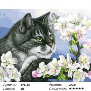 Яблоневый цвет Раскраска ( картина ) по номерам на холсте Белоснежка