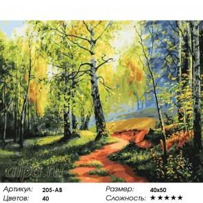 Количество цветов и сложность Березовая роща Раскраска картина по номерам акриловыми красками на холсте Белоснежка