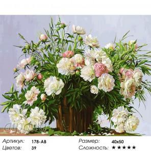 Количество цветов и сложность Пионовое настроение Раскраска картина по номерам акриловыми красками на холсте Белоснежка