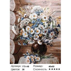 173-AB Летние прогулки Раскраска картина по номерам акриловыми красками на холсте Белоснежка