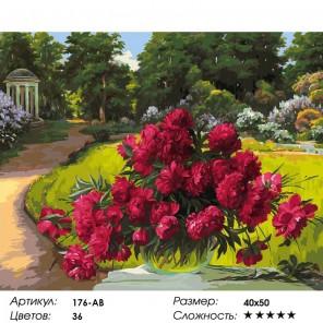 176-AB Лето в Архангельском Раскраска картина по номерам акриловыми красками на холсте Белоснежка