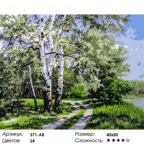 Количество цветов и сложность Белая береза Раскраска ( картина ) по номерам акриловыми красками на холсте Белоснежка
