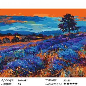 Лавандовые поля Раскраска ( картина ) по номерам акриловыми красками на холсте Белоснежка