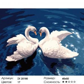 Два белокрылых лебедя  Раскраска картина по номерам на холсте