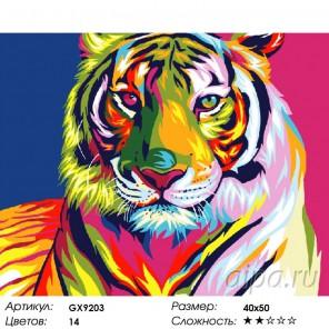 Количество цветов и сложность Радужный тиг Раскраска картина по номерам акриловыми красками на холсте