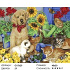 Количество цветов и сложность Наблюдатель Раскраска картина по номерам акриловыми красками на холсте