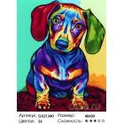 Количество цветов и сложность Радужный щенок Раскраска картина по номерам акриловыми красками на холсте