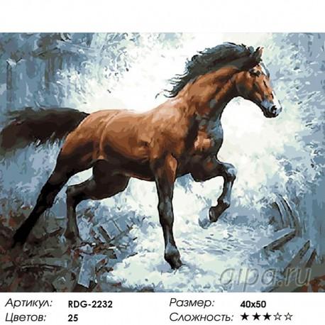 Раскраска по номерам Арабский скакун картина 40х50 см на ...