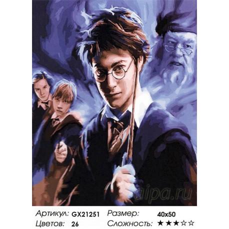Раскраска по номерам Гарри Поттер картина 40х50 см на ...