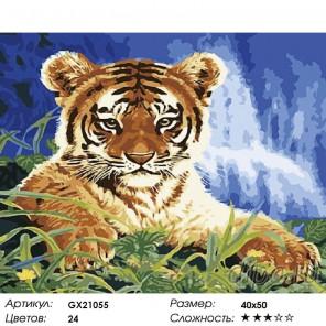 Гордый маленький тигренок Раскраска картина по номерам акриловыми красками на холсте