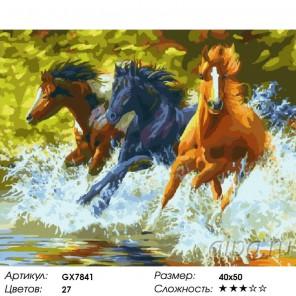 Количество цветов и сложность Всплеск Раскраска картина по номерам акриловыми красками на холсте