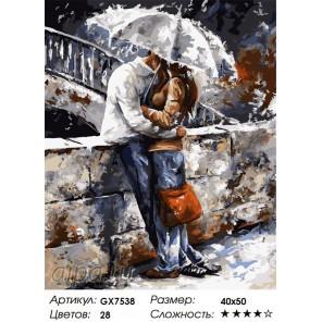 Романтичная прогулка под дождем Раскраска картина по номерам на холсте