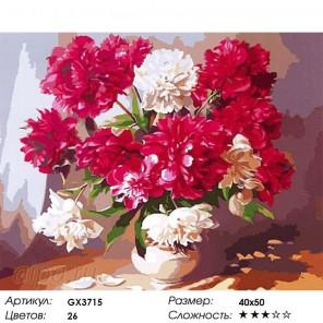 Количество цветов и сложность Китайские пионы в вазе Раскраска картина по номерам акриловыми красками на холсте