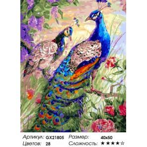 Количество цветов и сложность Пара павлинов Раскраска картина по номерам акриловыми красками на холсте
