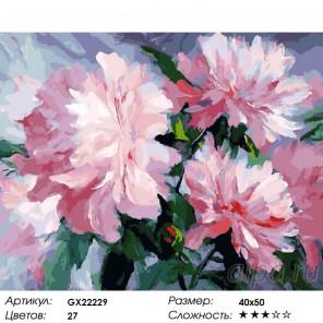 Количество цветов и сложность Розовое наслаждение Раскраска картина по номерам акриловыми красками на холсте
