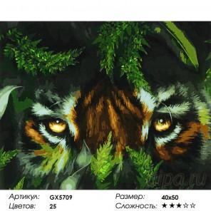 Количество цветов и сложность Затаившийся тигр Раскраска картина по номерам акриловыми красками на холсте