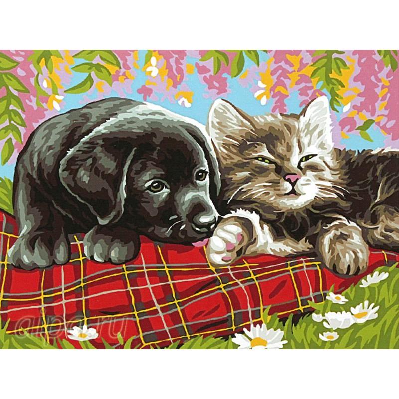 Раскраска по номерам Щенок и котенок картина 40х50 см на ...
