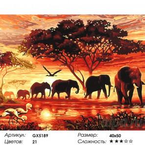 Количество цветов и сложность Слоны на закате Раскраска картина по номерам акриловыми красками на холсте