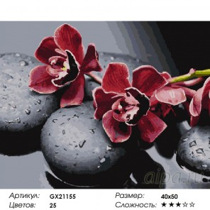 Спокойствие орхидей Раскраска картина по номерам на холсте