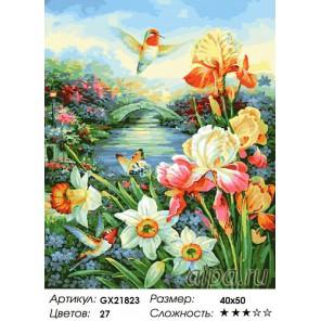 Сад с колибри Раскраска картина по номерам акриловыми красками на холсте