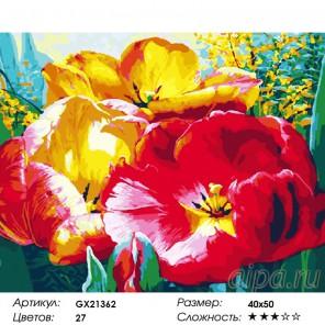 Состав-набора-Раскраска-картина-по-номерам-акриловыми-красками-на-холсте