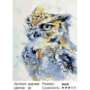 Любознательная сова Раскраска картина по номерам на холсте