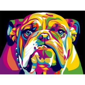 Радужный американский бульдог Раскраска картина по номерам акриловыми красками на холсте