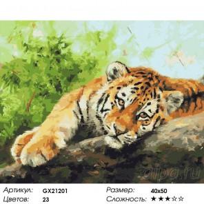Отдыхающий тигр Раскраска картина по номерам на холсте
