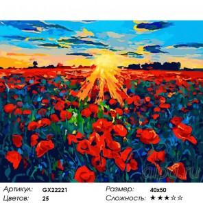 Маки на закате Раскраска картина по номерам на холсте