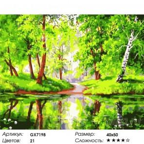 Количество цветов и сложность Лесное зеркало Раскраска картина по номерам акриловыми красками на холсте