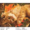 Количество цветов и сложность Встречая осень Раскраска картина по номерам акриловыми красками на холсте