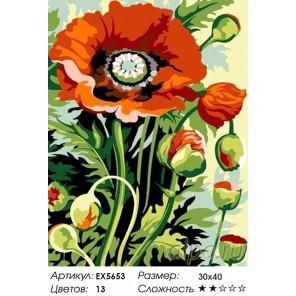 Количество цветов и сложность Бутоны мака Раскраска картина по номерам акриловыми красками на холсте