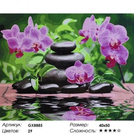 Раскраска по номерам Лиловые орхидеи картина 40х50 см на ...