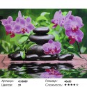 Лиловые орхидеи Раскраска картина по номерам на холсте