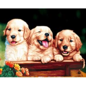Забавные щенки Алмазная мозаика на подрамнике