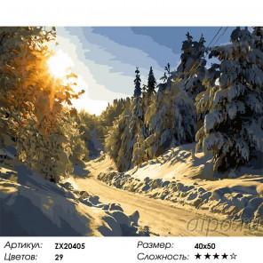 Количество цветов и сложность Снежное покрывало Раскраска картина по номерам акриловыми красками на холсте