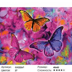 Количество цветов и сложность Радужные бабочки Раскраска картина по номерам акриловыми красками на холсте