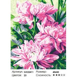 Крупные хризантемы Раскраска картина по номерам на холсте
