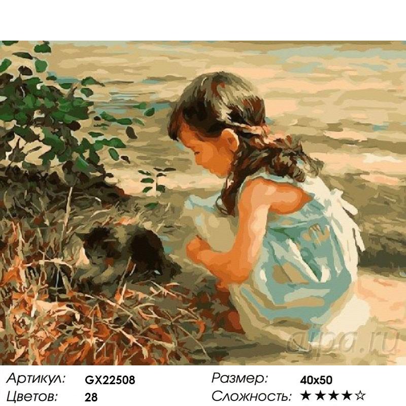 Раскраска по номерам Игра с котенком картина 40х50 см на ...