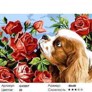Спаниель и розы Раскраска картина по номерам на холсте