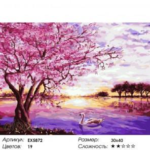 Сакура и лебедь на закат Раскраска картина по номерам на холсте
