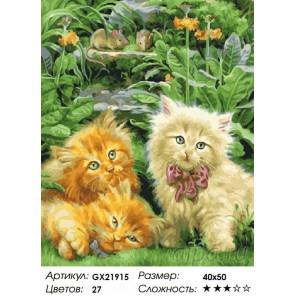 Количество цветов и сложность Милые котята в траве Раскраска картина по номерам на холсте