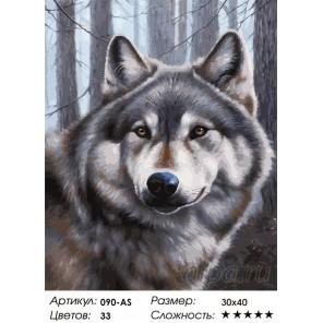 Количество цветов и сложность Волк Раскраска картина по номерам на холсте Белоснежка
