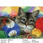 Количество цветов и сложность Котик с клубочками Раскраска картина по номерам на картоне Белоснежка