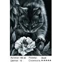Количество цветов и сложность Ночные приключения (художник Ирина Гармашова) Раскраска картина по номерам на холсте Белоснежка