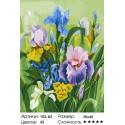 Количество цветов и сложность Нежные ирисы (художник Татьяна Горбатенькая) Раскраска картина по номерам на холсте Белоснежка