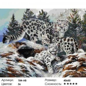 Количество цветов и сложность Ирбисы Раскраска картина по номерам на холсте Белоснежка