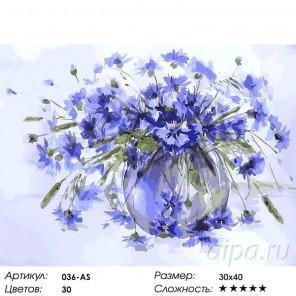 Василёчки-васильки Раскраска ( картина ) по номерам акриловыми красками на холсте Белоснежка