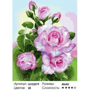Количество цветов и сложность Розы на ветке Раскраска картина по номерам на холсте